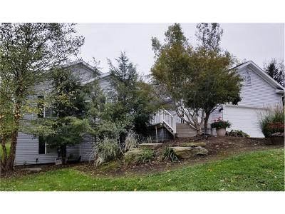 Concord Single Family Home For Sale: 11370 Prouty Rd