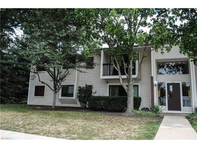 Westlake Condo/Townhouse For Sale: 2860 North Bay Dr #N5