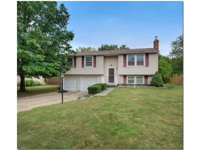 Strongsville Single Family Home For Sale: 22266 Lorraine Dr