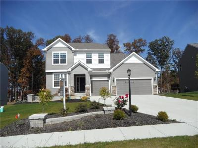 Strongsville OH Single Family Home For Sale: $452,500