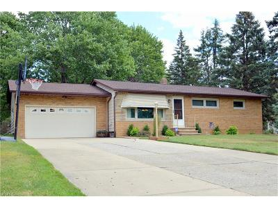 Brecksville, Broadview Heights Single Family Home For Sale: 8295 Wright Rd