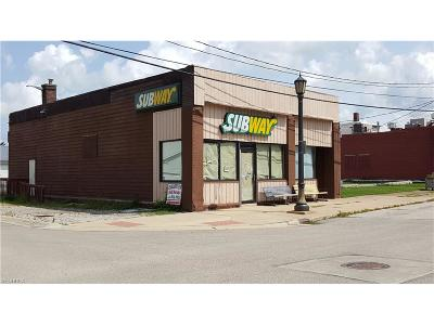 Conneaut Commercial For Sale: 198 Park Ave