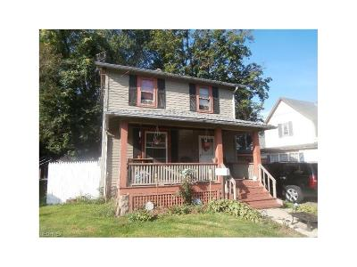 Painesville Single Family Home For Sale: 253 Courtland St