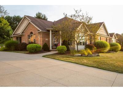 Condo/Townhouse For Sale: 1228 Saint Abigail St Southwest