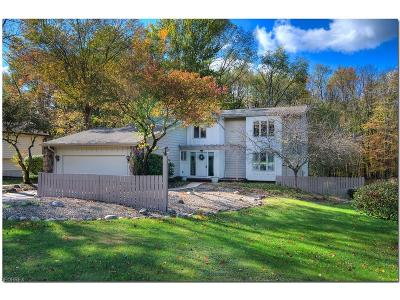 Chagrin Falls Single Family Home For Sale: 18020 Stoney Brook Ct