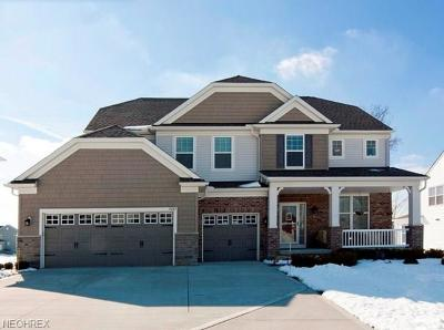 Twinsburg Single Family Home For Sale: 2082 Meadowood Blvd
