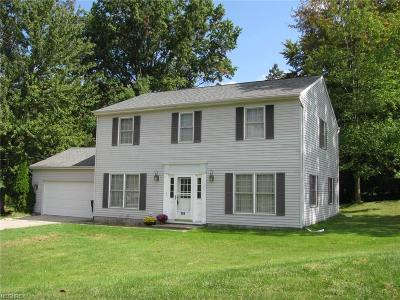Painesville Single Family Home For Sale: 149 Park Rd
