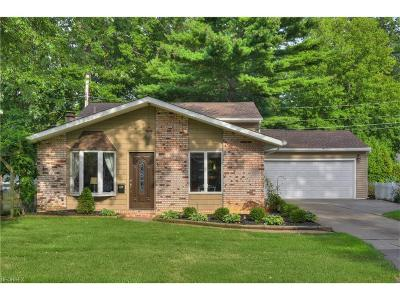 Avon Lake Single Family Home For Sale: 179 South Point Dr