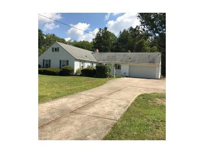 Olmsted Township Single Family Home For Sale: 9311 Usher Rd