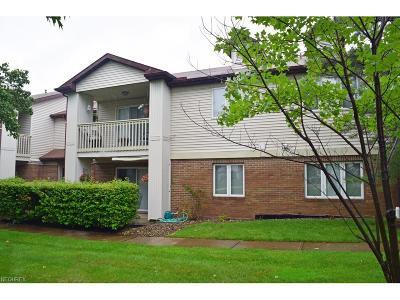Concord Condo/Townhouse For Sale: 7128 Village Dr