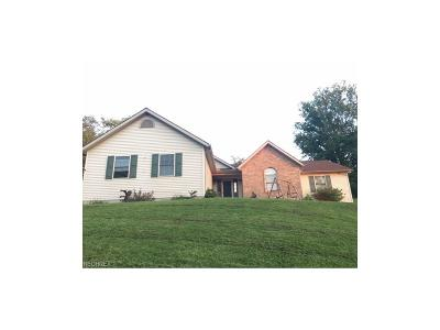 Newcomerstown OH Single Family Home For Sale: $169,900