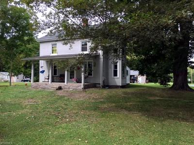 Garrettsville Single Family Home For Sale: 10533 Windham Parkman Rd