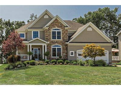 Concord Single Family Home For Sale: 7478 Jumpers Crossing Ln