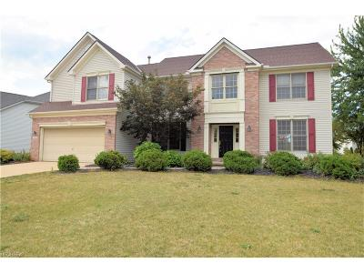 Waterford Crossing Single Family Home For Sale: 20418 Colleen Ct