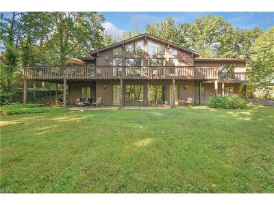 Canfield Single Family Home For Sale: 820 Blueberry Hill Dr