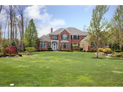 Solon Single Family Home For Sale: 7514 Worlington Dr