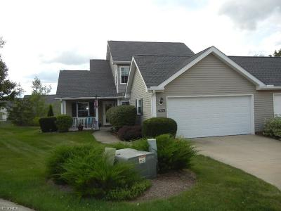 Broadview Heights Condo/Townhouse For Sale: 1925 Deerhaven Ln