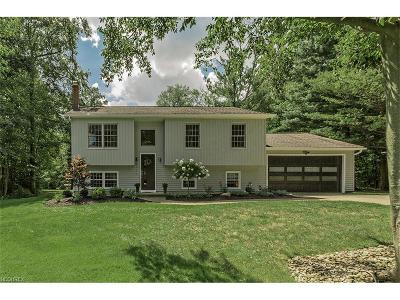 Chagrin Falls Single Family Home For Sale: 9189 Old Meadow Dr