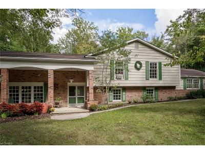 Chagrin Falls Single Family Home For Sale: 8154 Chagrin Rd