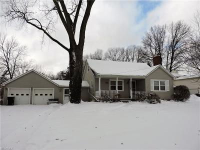 Elyria Single Family Home For Sale: 746 Abbe Rd North