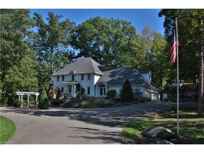 Copley Single Family Home For Sale: 3941 Minor Rd