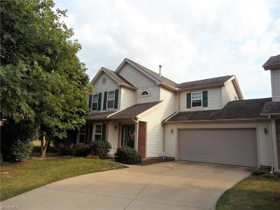 Middleburg Heights Single Family Home For Sale: 15791 Lakeview Ter