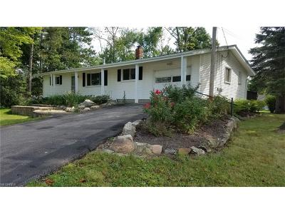 Chardon Single Family Home For Sale: 10325 Auburn Rd