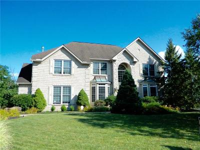 Aurora Single Family Home For Sale: 150 Cambridge Dr