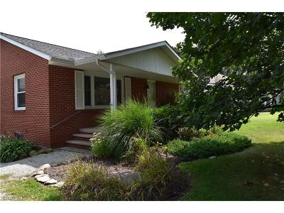 Painesville Township Single Family Home For Sale: 550 Park Rd