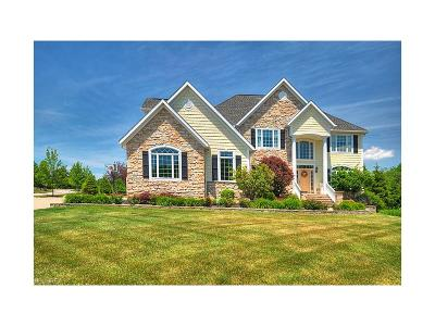 Hinckley Single Family Home For Sale: 461 Wakefield Run Blvd