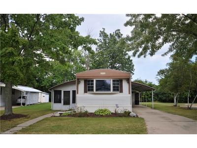 Olmsted Township Single Family Home For Sale: 19 Parade St
