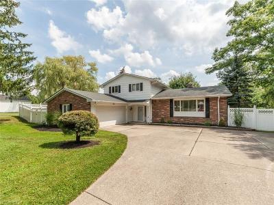 Broadview Heights Single Family Home For Sale: 2538 Harris Rd