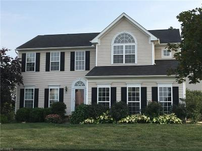 Kent Single Family Home For Sale: 998 Red Fern Cir