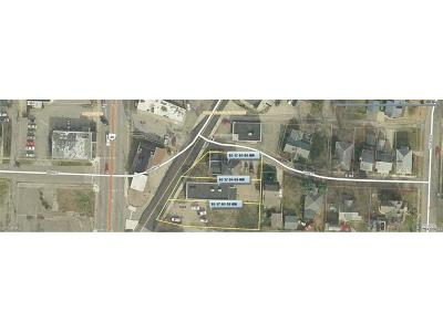 Zanesville Commercial For Sale: 1824-1838 Dresden Rd