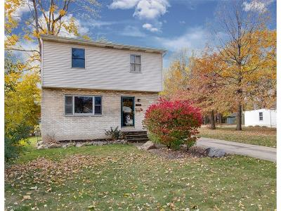 Wickliffe Single Family Home For Sale: 1722 East 296th St