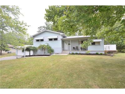 Canfield Single Family Home For Sale: 5971 Calico Ln
