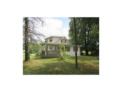 Canfield Single Family Home For Sale: 8936 South Salem Warren Rd