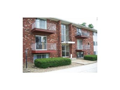 Brunswick Condo/Townhouse For Sale: 4360 Inner Circle Dr #A-13