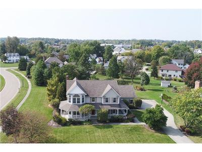 Canfield Single Family Home For Sale: 281 Topaz Cir
