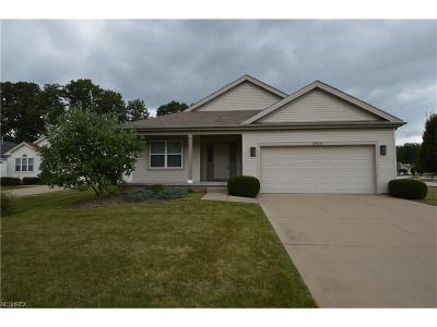Twinsburg Single Family Home For Sale: 1585 Silver Oak Cir