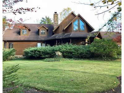 Medina Single Family Home For Sale: 7421 Ballash Rd