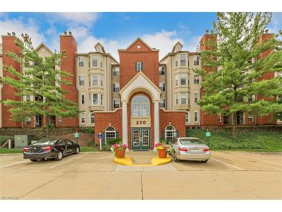 Mayfield Heights Condo/Townhouse For Sale: 220 Fox Hollow Dr #107