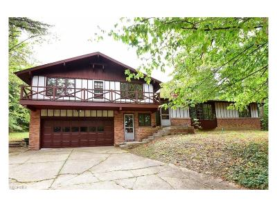 Hinckley Single Family Home For Sale: 295 River Rd