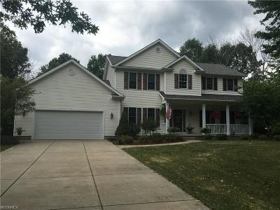 Canfield Single Family Home For Sale: 4546 South Raccoon Rd