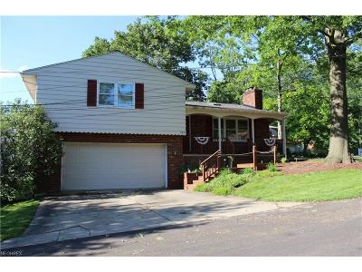 Chippewa Lake Single Family Home For Sale: 203 Richard Dr