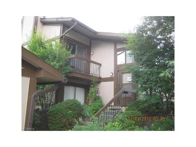 Copley Condo/Townhouse For Sale: 806 Kirkwall Dr #43F