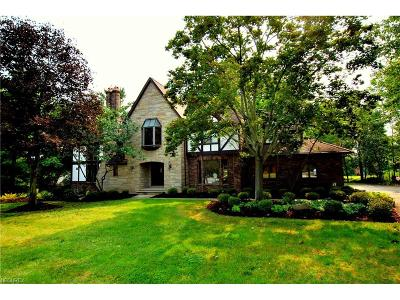 Brecksville Single Family Home For Sale: 6521 Crabtree Ln
