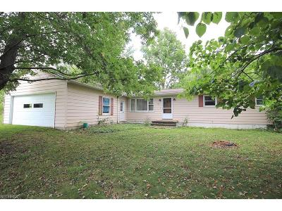 Medina Single Family Home For Sale: 5788 Lafayette Rd