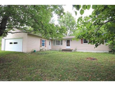 Medina Single Family Home For Sale: 5788 Lafayette Rd