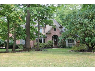 Medina Single Family Home For Sale: 3525 Hunting Run Rd